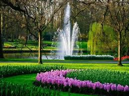 31 best photos of beautiful flower garden in the holland images on
