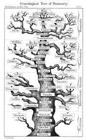 evogeneao the tree of