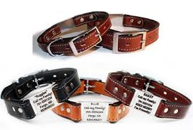 personalized collars 4 dogs scrufftag custom collars