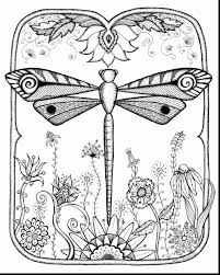 brilliant cute animal dragonfly coloring pages pictures to print