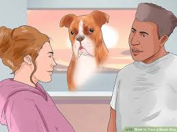 boxer dog training tips 3 ways to train a boxer dog wikihow