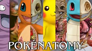 pokénatomy an unofficial guide to the science of pokémon by
