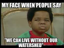 Say That To My Face Meme - meme maker my face when people say we can live without our watershed
