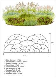 ornamental grass layout plan garden yard inspiration
