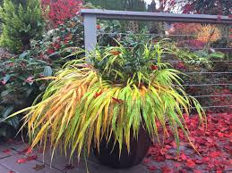 home hyland garden design october clearance sale 40 off pots 30 off fountains