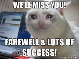 Success Cat Meme - image crying cat well miss you farewell lots of success jpg