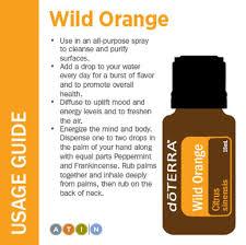 diy u2013 wild orange creamsicle u2013 anxiety relief u2013 bath blend