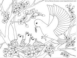 mother bird baby birds coloring page coloring pinterest