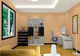 living room ceiling ideas living room ceiling colors living room ceiling colors million