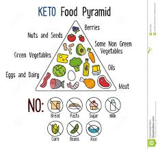 keto food pyramid stock vector image 55874898 proper