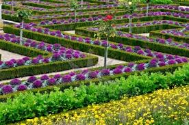beautiful vegetable gardens designs decorating clear