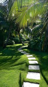 Tropical Landscaping Ideas by Best 20 Tropical Gardens Ideas On Pinterest Tropical Garden