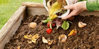 what can be composted 40 items to compost or avoid personal
