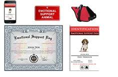 Comfort Dog Certificate Esa Dog Certificate Page 3 Pics About Space