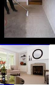 Upholstery In Fort Lauderdale Best 25 Upholstery Cleaning Machine Ideas On Pinterest Dog Car