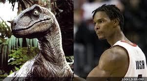 Chris Bosh Memes - web s best chris bosh resembles a dinosaur memes