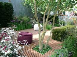 oriental garden design bold and modern 28 japanese garden design