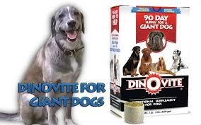 dino vite dinovite for dogs