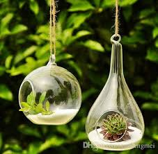 hanging glass for air plant hanging glass for air plant