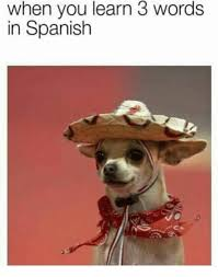 Spanish Memes - when you learn 3 words in spanish spanish meme on conservative memes