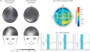 topical psychophysiology