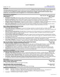information technology resume template information technology test manager resume sle best of