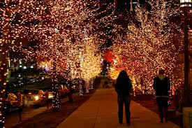 life of tracy temple square christmas lights