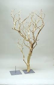 manzanita branches wholesale botanico ltd catalogue branches manzanita branch