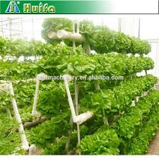 list manufacturers of hydroponic seed buy hydroponic seed get