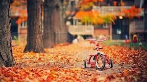 cute fall wallpaper for desktop autumn iphone wallpaper