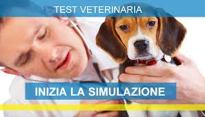 test ingresso veterinaria test ingresso veterinaria 2017 simulazioni