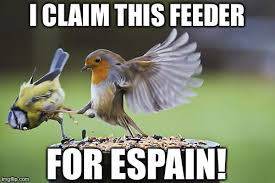 Sparta Meme Generator - bird sparta meme generator imgflip