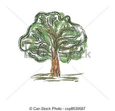 vector clip art of old trees drawing graphic sketch csp5268451
