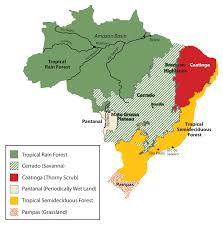Moving From Coast To Interior Regions Of Sub Saharan Africa World Regional Geography A Course Supplement People Places And