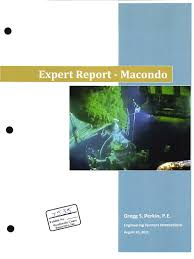 perkin expert report blowout well drilling geotechnical