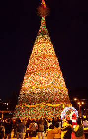 guatemala city christmas tree lighting this is so on my bucket