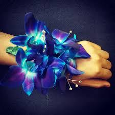 blue orchid corsage corsages boutonnieres michael allen s flowers
