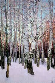 silver birches in winter tree bark birches and birch