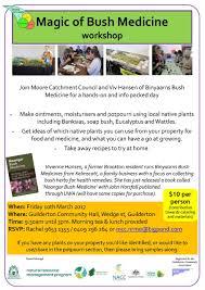 australian native medicinal plants magic of bush medicine nacc northern agricultural catchments
