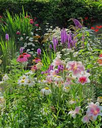 Cottage Garden Design Ideas by Cottage Garden Flowers Daisies Liatris Lilies Crocosmia