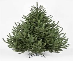 christmas trees 7ft kaemingk nobilis fir 210cm 7ft blue artifical