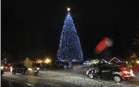 snow tree lights arrive together idyllwild town crier