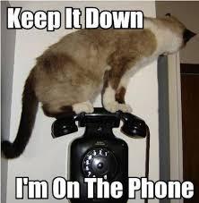 Funny Phone Memes - phone meme