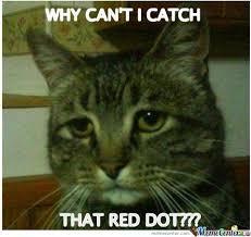 Antidepressant Meme - beautiful antidepressant meme depressed cat memes image memes at