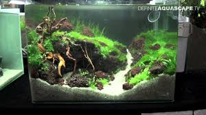 Planted Aquarium Aquascaping Aquascaping Qualifyings For The Art Of The Planted Aquarium 2015