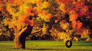 autumn wallpapers list
