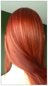 shades of brown hair color dye clanagnew decoration