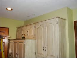 Floor Molding Ideas Crown Moulding Ideas Crown Molding Between Wall And Ceiling