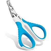 forego the groomer top 5 best nail clippers and trimmers for