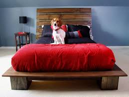 Elevated Dog Bed With Stairs Bedroom Magnificent Bed With Dog Crate Built In How To Make A